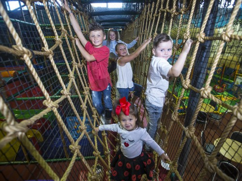 Kids climbing across rope bridge at Indiana Land